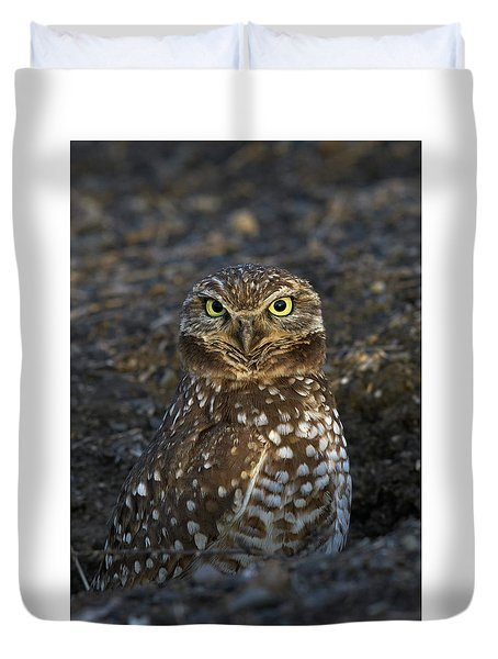 Burrowing Owl Duvet Cover by Doug Herr