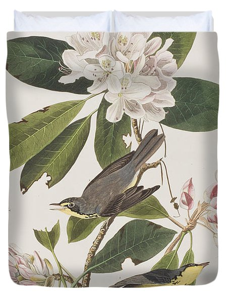 Canada Warbler Duvet Cover by John James Audubon