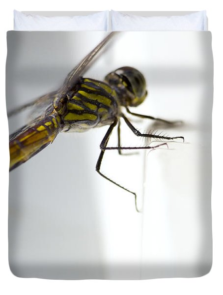 Close Up Shoot Of A Anisoptera Dragonfly Duvet Cover