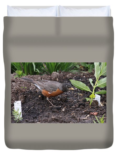 Courtyard Robin Duvet Cover