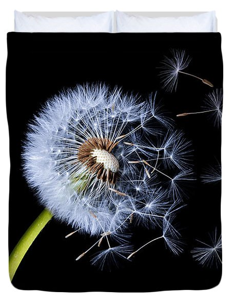 Duvet Cover featuring the photograph Dandelion On Black Background by Bess Hamiti