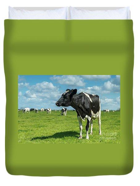 Dutch Cow Duvet Cover