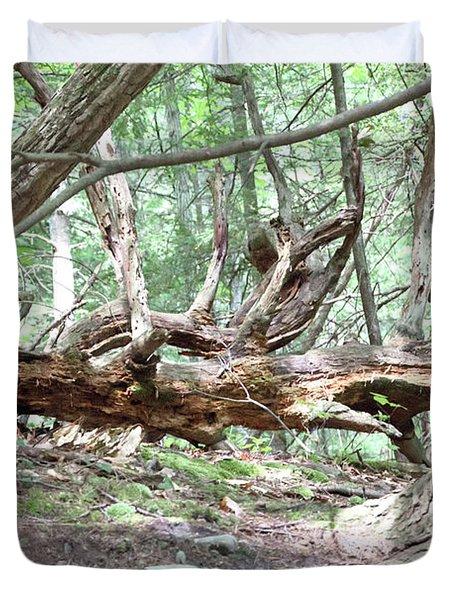Fallen Tree Duvet Cover