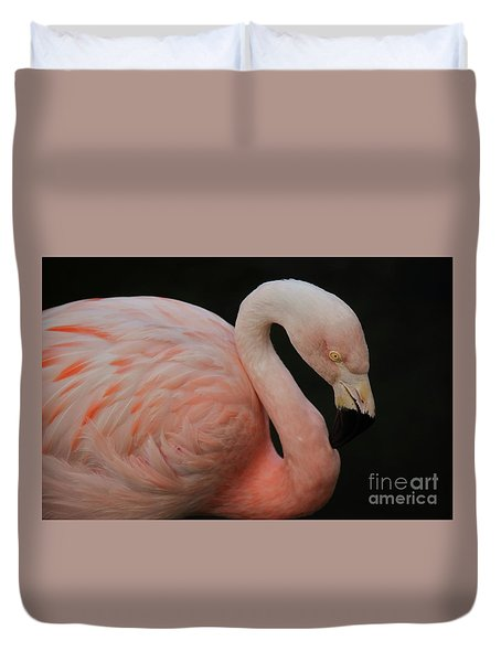Flamingo Duvet Cover by Paulette Thomas