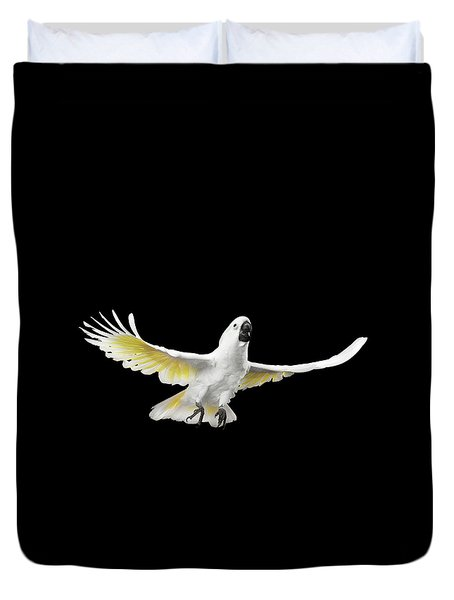 Flying Crested Cockatoo Alba, Umbrella, Indonesia, Isolated On Black Background Duvet Cover