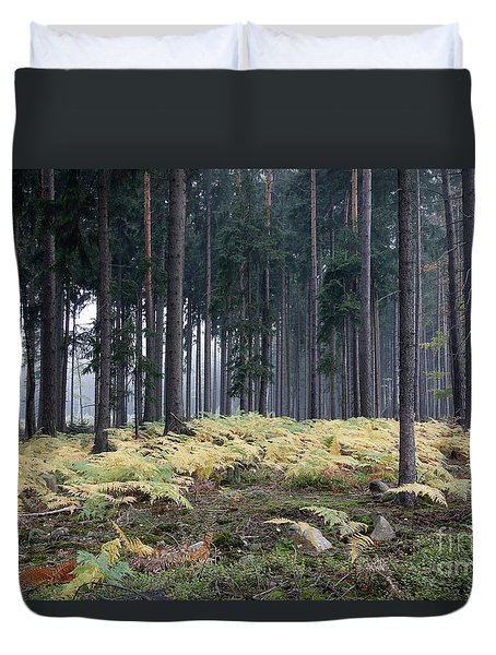 Fog In The Forest With Ferns Duvet Cover by Michal Boubin