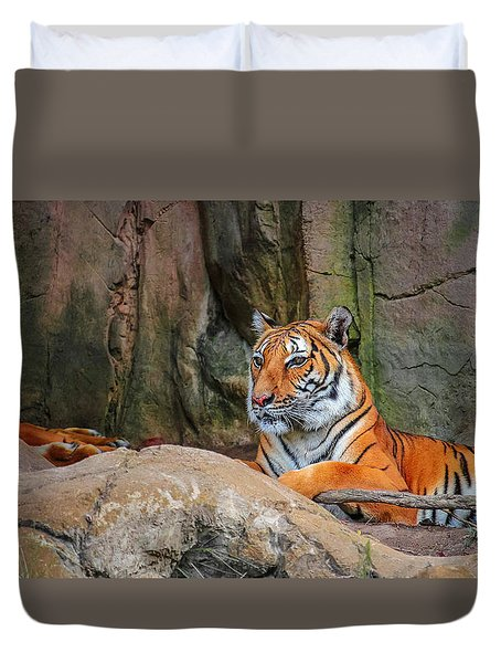 Fort Worth Zoo Tiger Duvet Cover