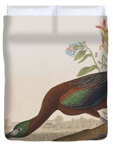 Glossy Ibis Duvet Cover by John James Audubon