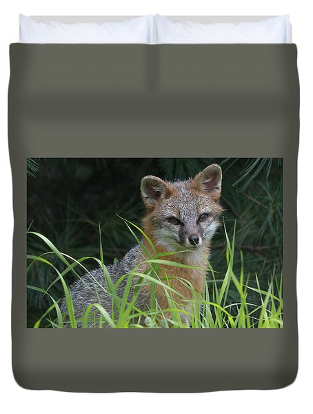 Gray Fox In The Grass Duvet Cover