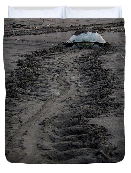 Green Sea Turtle Returning To Sea Duvet Cover