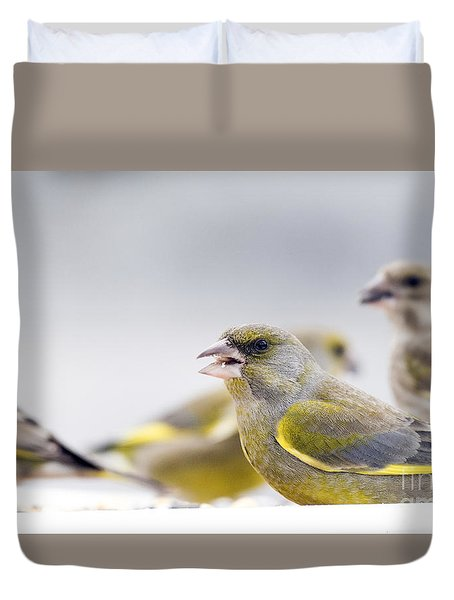 Greenfinches Duvet Cover