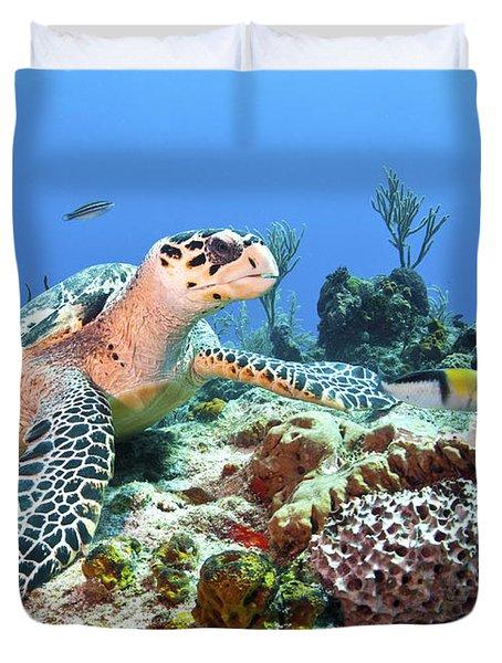 Hawksbill Turtle Feeding On Sponge Duvet Cover