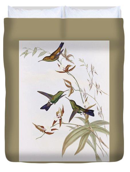 Hummingbirds Duvet Cover by John Gould