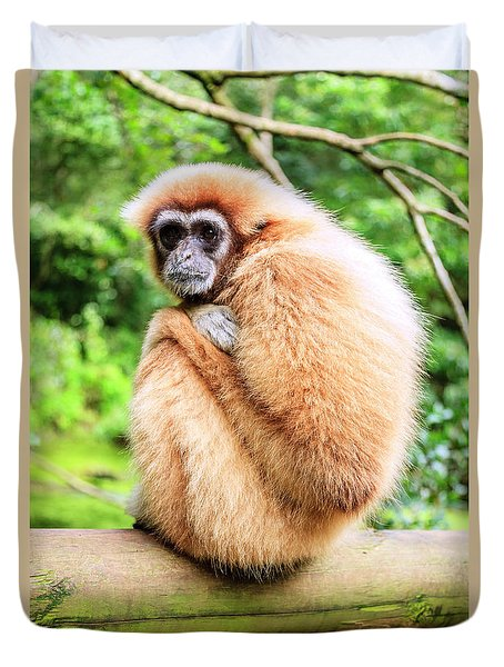 Duvet Cover featuring the photograph Lar Gibbon by Alexey Stiop
