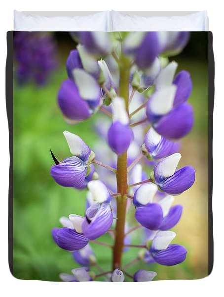 Lupine Blossom Duvet Cover by Robert Clifford