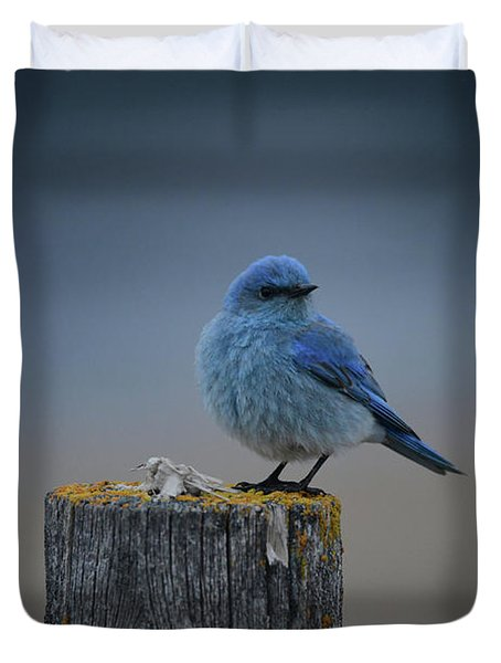 Mountain Bluebird 2 Duvet Cover