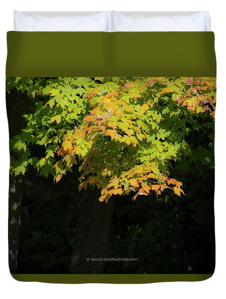 October Colors Duvet Cover by Tracey Rees