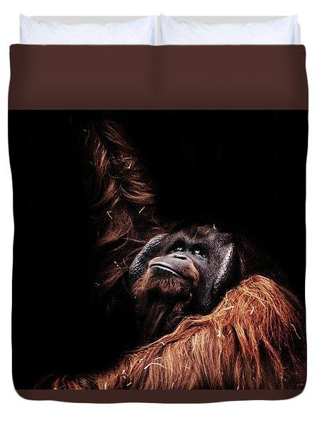 Orangutan Duvet Cover by Martin Newman