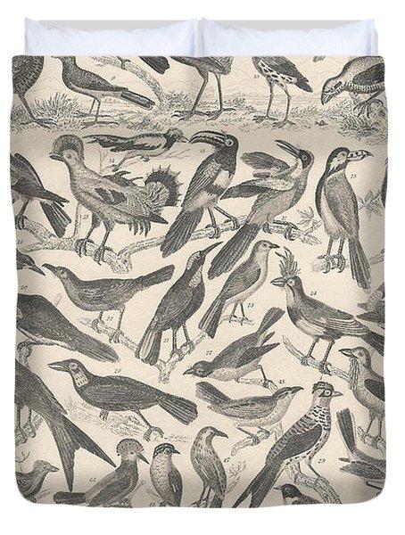 Ornithology Duvet Cover