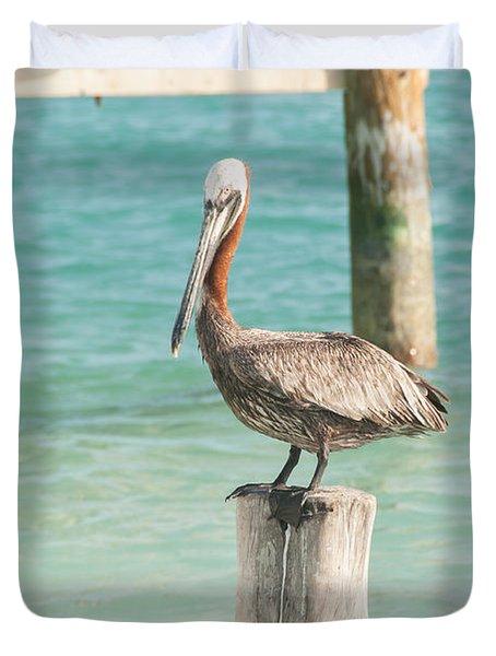 Pelican At Isla Mujeres Duvet Cover