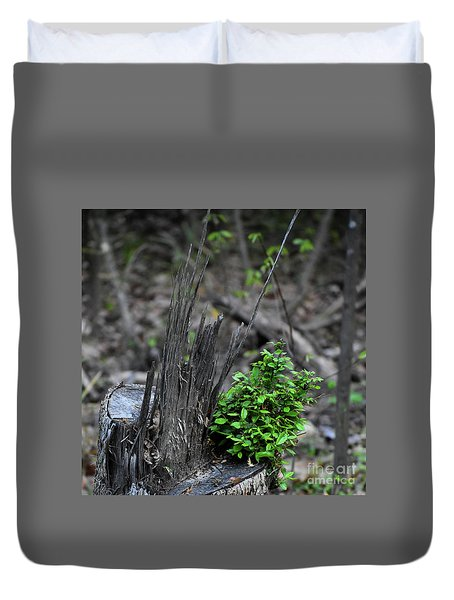 Duvet Cover featuring the photograph Persistence by Skip Willits