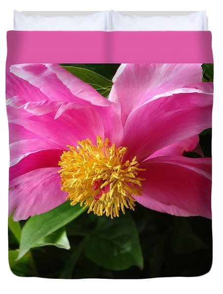 Pink Peony Duvet Cover by Rebecca Overton