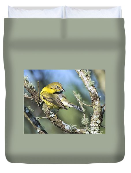Prairie Warbler Duvet Cover