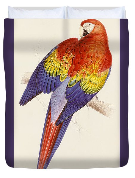 Red And Yellow Macaw Duvet Cover by Edward Lear