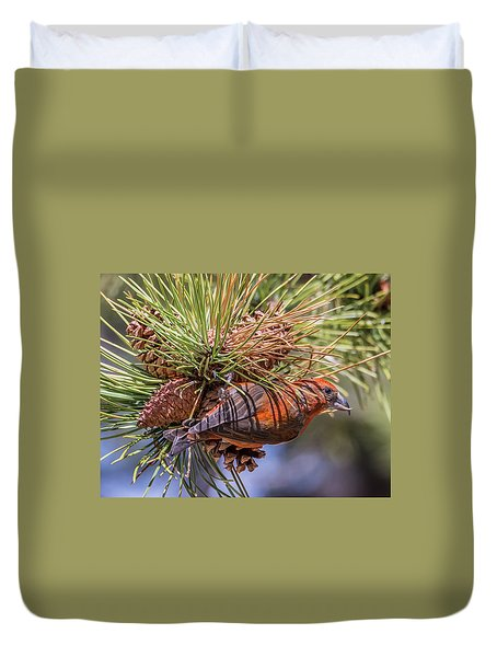 Red Crossbill Duvet Cover