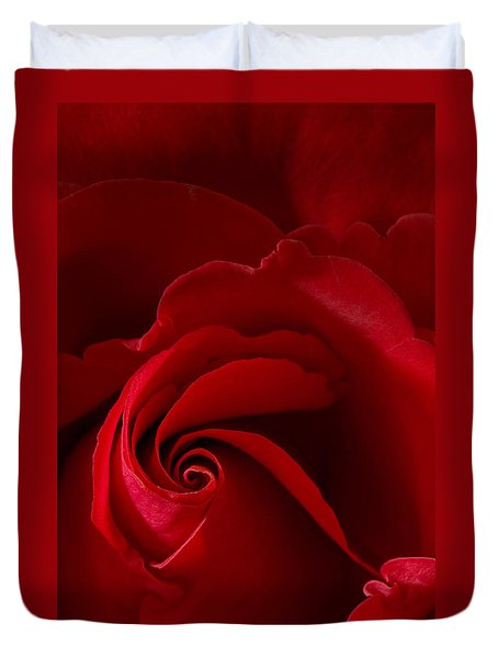 Red Rose Iv Duvet Cover by George Robinson