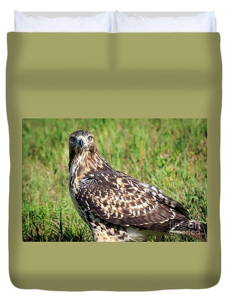 Red-tail Portrait Duvet Cover