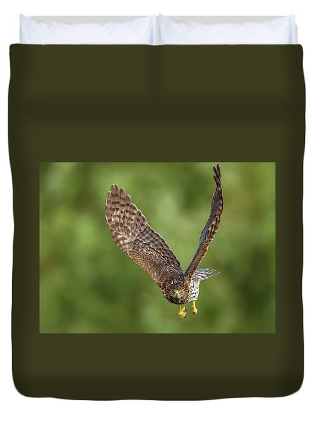 Duvet Cover featuring the photograph Red-tailed Hawk by Peter Lakomy
