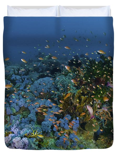 Reef Scene With Coral And Fish Duvet Cover by Mathieu Meur