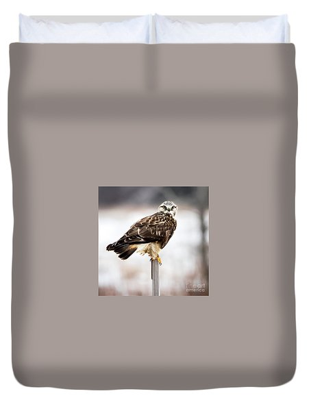 Rough-legged Hawk Duvet Cover