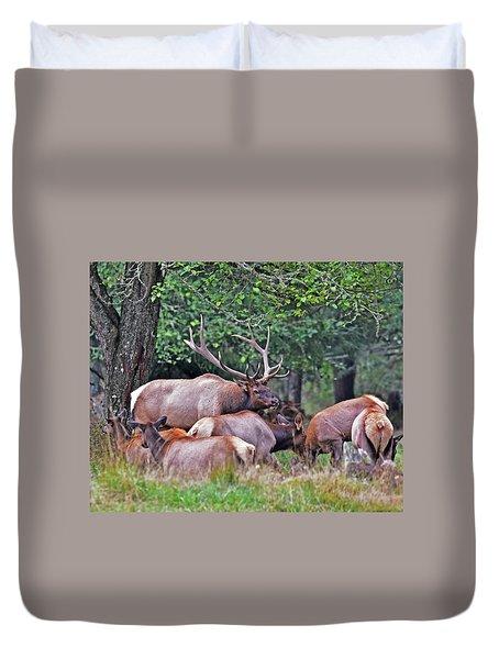 Royal Roosevelt Bull Elk Duvet Cover