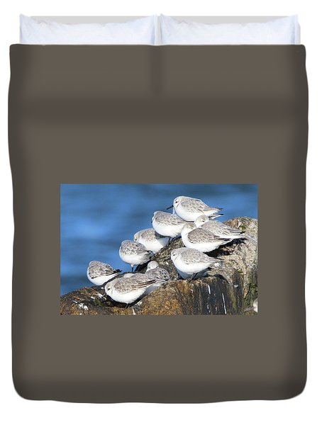 Sanderling Westhampton New York Duvet Cover