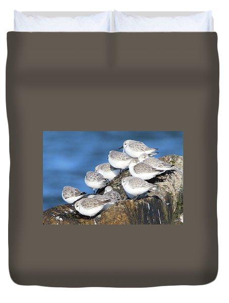 Sanderling Westhampton New York Duvet Cover
