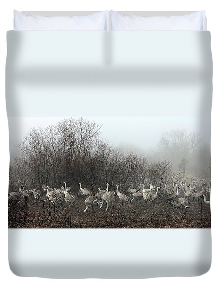 Sandhill Cranes And The Fog Duvet Cover by Farol Tomson
