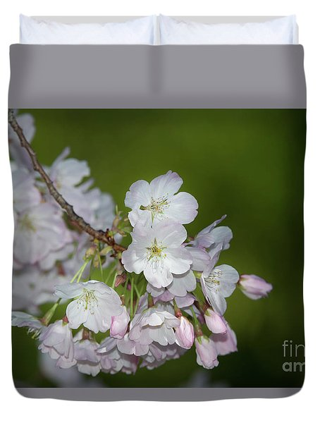 Silicon Valley Cherry Blossoms Duvet Cover
