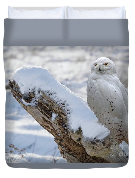 Duvet Cover featuring the photograph Snowy Owl by Jim  Hatch