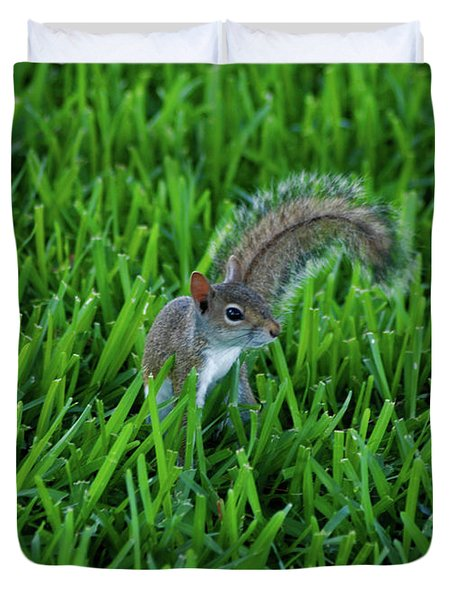 Duvet Cover featuring the photograph 2- Squirrel by Joseph Keane