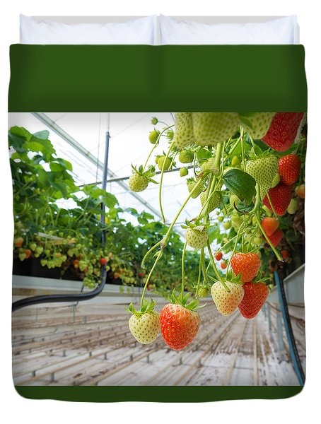 Duvet Cover featuring the photograph Strawberry Farm by Hans Engbers