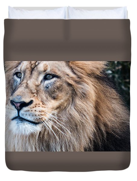 Duvet Cover featuring the photograph Those Eyes by Cathy Donohoue