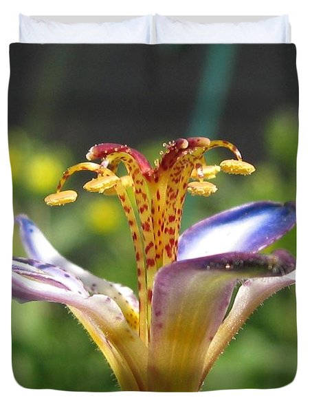 Tricyrtis Named Taipei Silk Duvet Cover