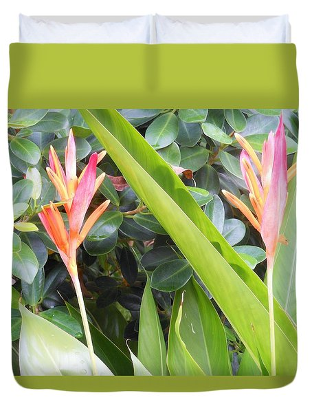 Tropical Flowers Duvet Cover by Kay Gilley