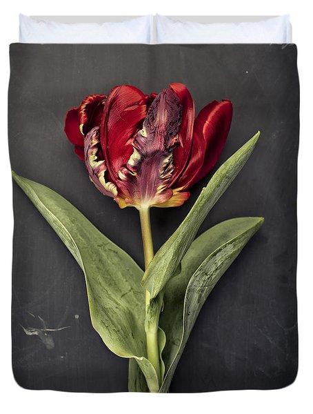 Tulip Duvet Cover by Nailia Schwarz