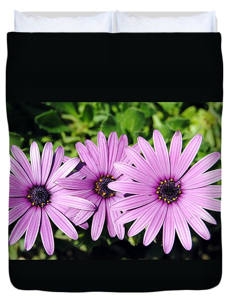 The African Daisy 2 Duvet Cover