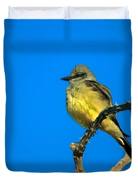 Western Kingbird Duvet Cover by Robert Bales