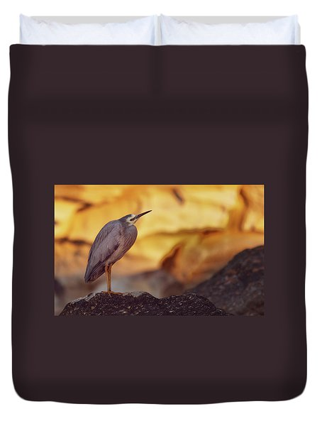White-faced Heron At The Beach Duvet Cover
