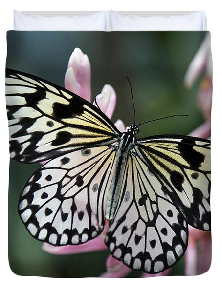 Duvet Cover featuring the photograph White Tree Nymph Butterfly by Sue Harper